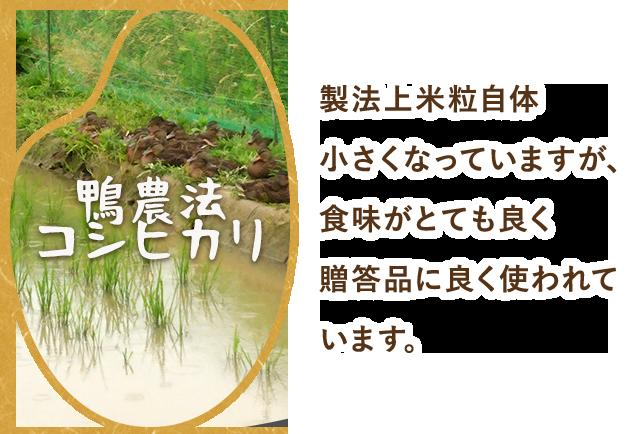 鴨農法コシヒカリ