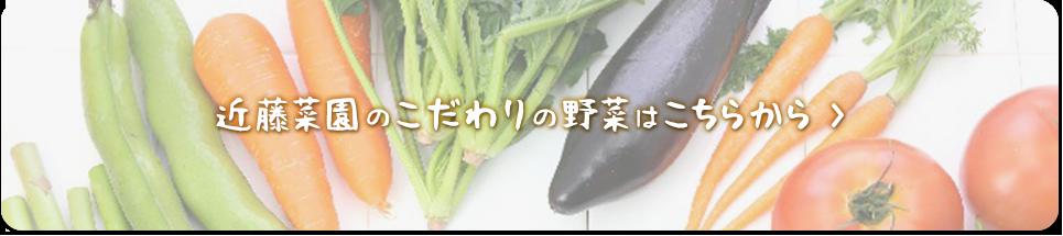 近藤農園のこだわりの野菜はこちらから