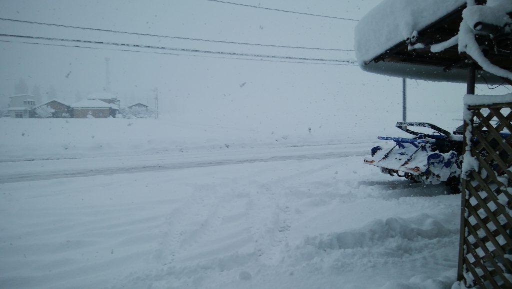 今日の新潟市の雪